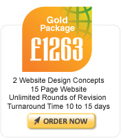 Website Gold Package