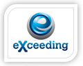 We created this logo for exceeding