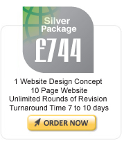 Website Silver Package